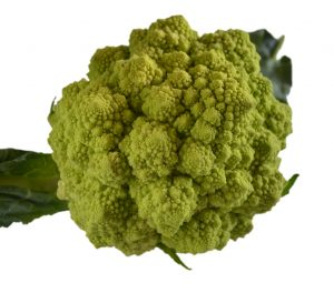 Romanesco_white